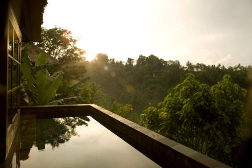 Rainforest「Villa Sunrise in Ubud Bali」:スマホ壁紙(6)