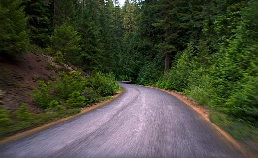 ウィラメット国有林「Willamette National Forest Highway, Oregon」:スマホ壁紙(17)