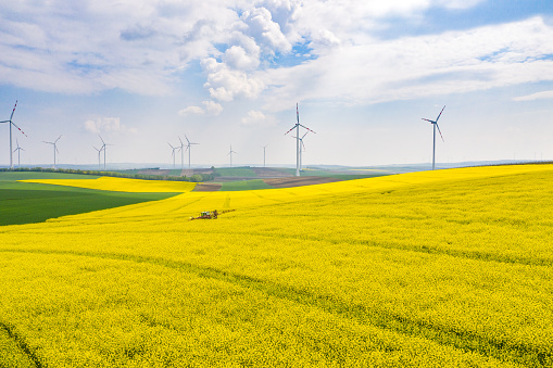 Insecticide「Fields and wind turbines.」:スマホ壁紙(4)