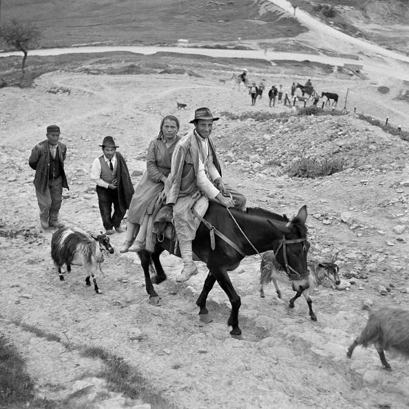 Pasture「Lucania Peasants」:写真・画像(9)[壁紙.com]
