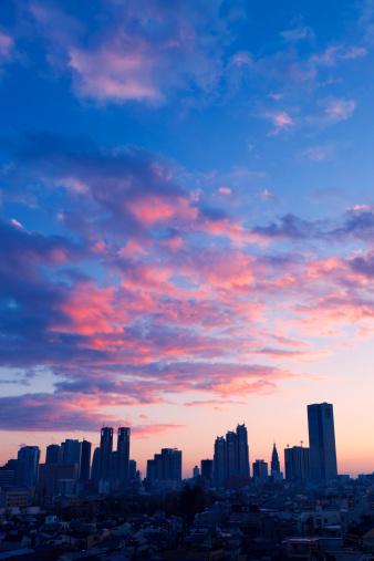 Shinjuku Ward「Shinjuku Skyline at Dawn」:スマホ壁紙(11)
