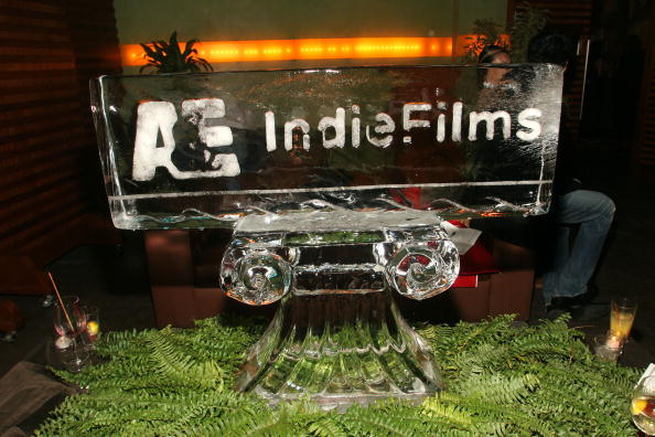 Ice Sculpture「Documentary Filmmaker's Party At Tribeca Film Festival」:写真・画像(15)[壁紙.com]
