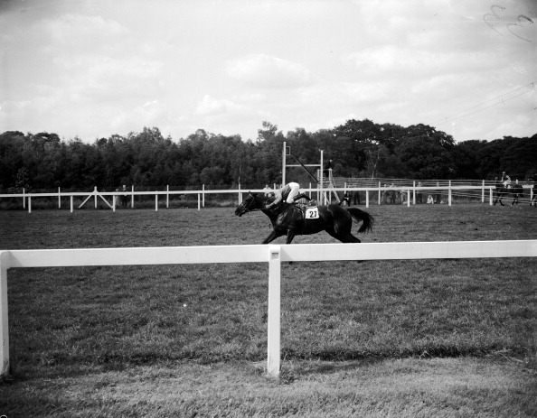 One Man Only「Star Chamber At Ascot」:写真・画像(13)[壁紙.com]