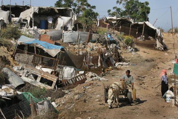 Dust「Aid Groups Help Palestinians Weather Economic Crisis」:写真・画像(3)[壁紙.com]