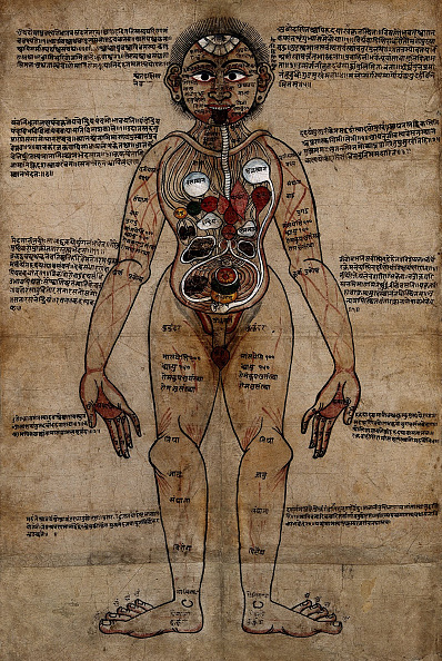 Herb「Ayurvedic Man」:写真・画像(10)[壁紙.com]