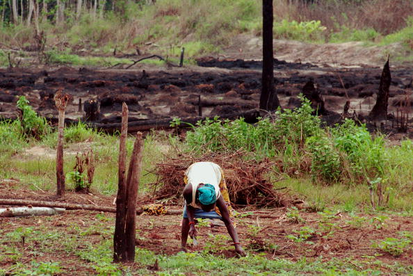 Effort「Nigerian Oil Feature」:写真・画像(19)[壁紙.com]