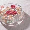 水に浮かぶ涼しげな花【壁紙】:まとめ