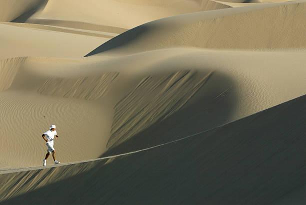 Bush Reversal of Protection for Dunes Challenged:ニュース(壁紙.com)