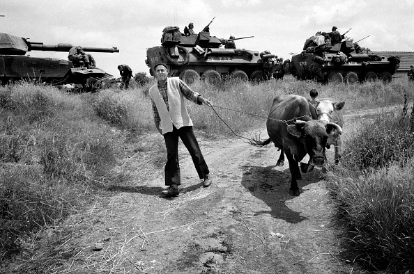 Mid Adult Men「Kosovo, farmer leading cows on road near Pristina, tanks in background」:写真・画像(4)[壁紙.com]