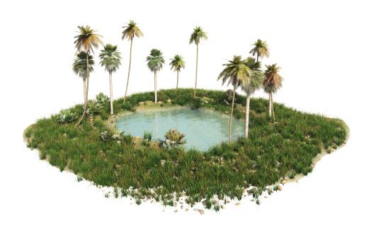 ココヤシの木「オアシス。」:スマホ壁紙(7)