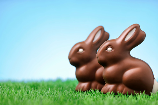 Baby Rabbit「Chocolate rabbits on grass」:スマホ壁紙(6)