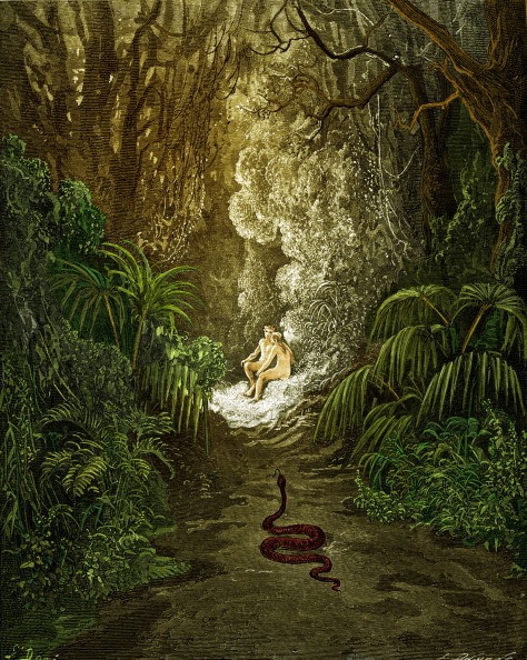 Snake「Paradise Lost, by Milton: The serpent approaches.」:写真・画像(15)[壁紙.com]