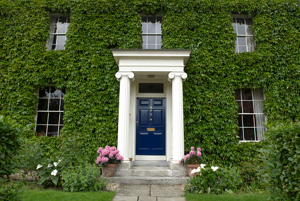 Potted Plant「Georgian house, front door, Suffolk, UK」:写真・画像(11)[壁紙.com]