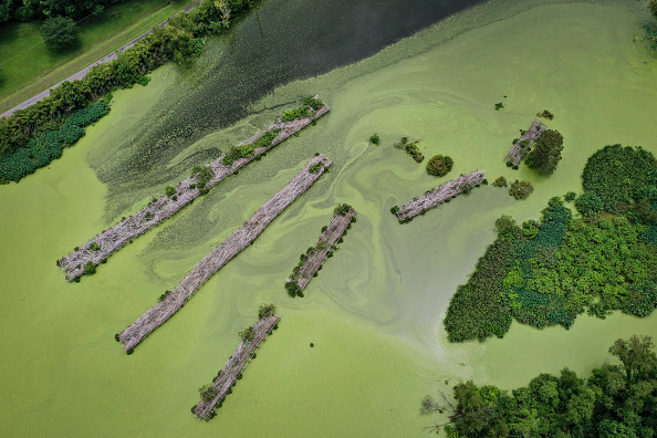 View Into Land「Combination Of Rising Sea Levels And Subsiding Land Endanger Louisiana Coast」:写真・画像(3)[壁紙.com]