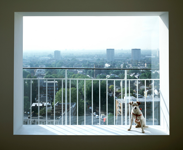 Window「View across Notting Hill from modern residential apartment. London, United Kingdom.」:写真・画像(9)[壁紙.com]