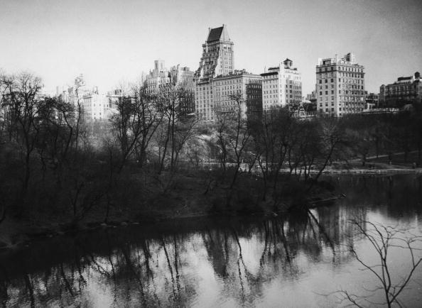 マンハッタン セントラルパーク「Central Park Lake」:写真・画像(18)[壁紙.com]