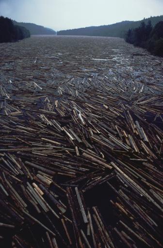 Deforestation「Logs on River」:スマホ壁紙(16)