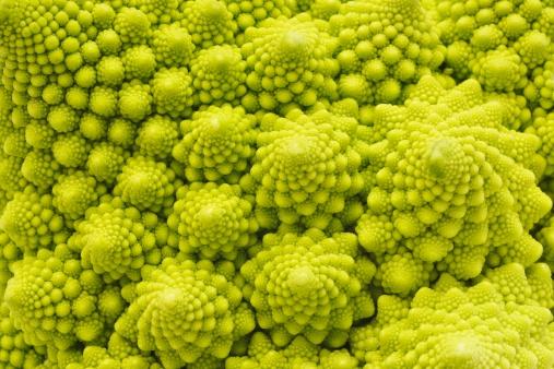Fractal「Romanesco Broccoli close-up」:スマホ壁紙(12)