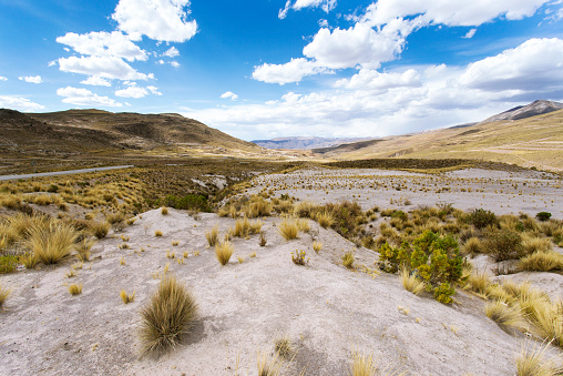 Steppe「Bolivia, Landscape between Arequipa and Lake Titicaca」:スマホ壁紙(12)