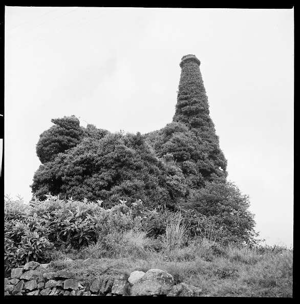 Obsolete「Ivy Covered Mine Engine House And Chimney」:写真・画像(19)[壁紙.com]
