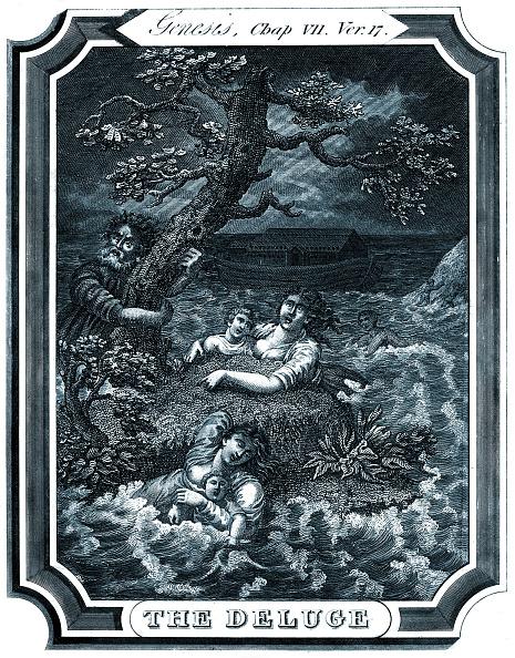 T 「Noah and the Flood」:写真・画像(3)[壁紙.com]