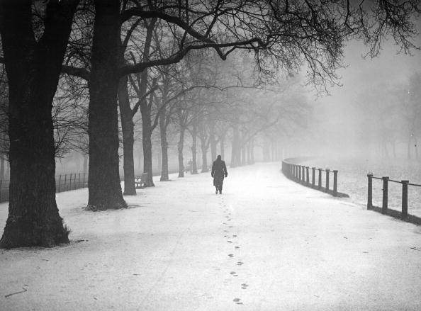 Snowing「Snowy Footsteps」:写真・画像(3)[壁紙.com]