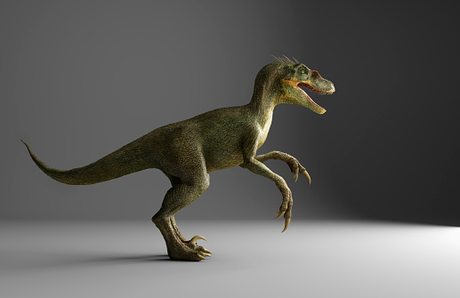 Dinosaur「Velociraptor dinosaur standing on gray background」:スマホ壁紙(17)