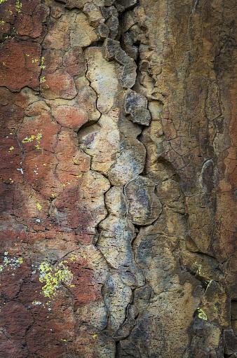 Basalt「Lichens on basalt」:スマホ壁紙(11)