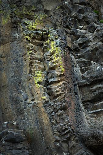 Basalt「Lichens on basalt」:スマホ壁紙(13)