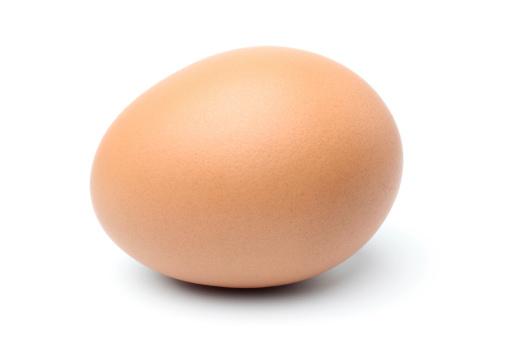 Animal Egg「Egg」:スマホ壁紙(12)