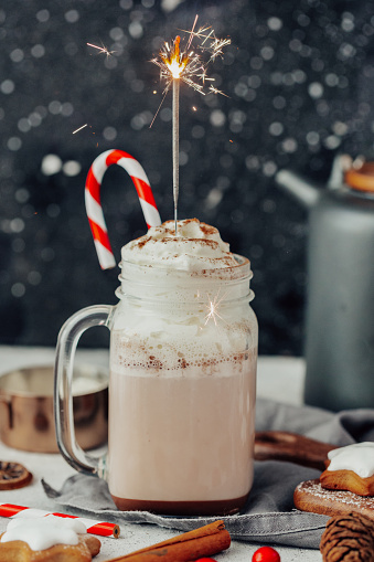 Candy Cane「Sprinkler in a mug of hot chocolate with whipped cream」:スマホ壁紙(18)