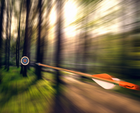 Sports Target「Arrow shooting through forest」:スマホ壁紙(3)