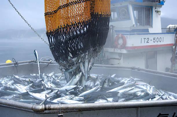 Fishing port:スマホ壁紙(壁紙.com)