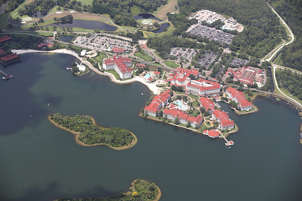 Tourist Resort「Alligator Snatches  2-Year-Old Boy From Lake At Disney Resort」:写真・画像(14)[壁紙.com]