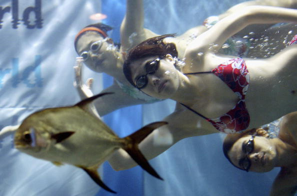魚・熱帯魚「Models Perform Underwater Fashion Show」:写真・画像(13)[壁紙.com]