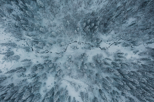 Ski Resort「Scenic aerial view of forest in  Carpathian mountains  in winter」:スマホ壁紙(2)
