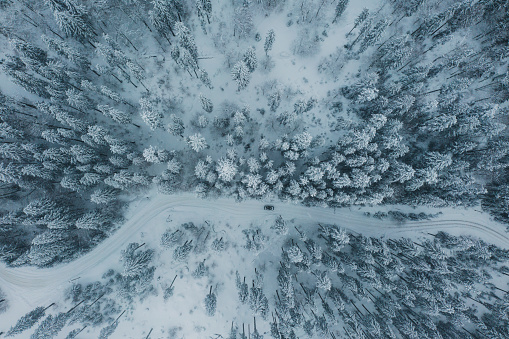 Ski Resort「Scenic aerial view of forest in  Carpathian mountains  in winter」:スマホ壁紙(9)