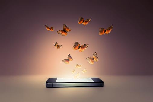 Lepidoptera「Smart phone」:スマホ壁紙(18)