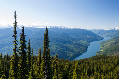 Columbia River「Columbia River Valley from Meadows in the Sky Pkwy」:スマホ壁紙(12)