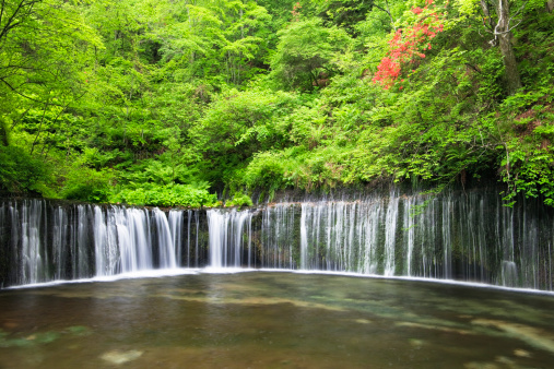 滝「Shiraito waterfall, Nagano Prefecture, Honshu, Japan」:スマホ壁紙(17)
