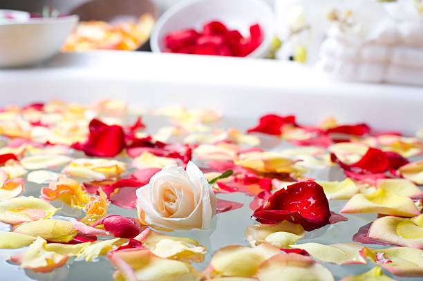 Rose with flower petals in a spa:スマホ壁紙(壁紙.com)