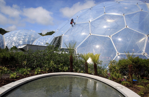 Rope Access Technician「Cornish Oasis Garden Opened at The Eden Project」:写真・画像(9)[壁紙.com]