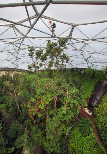 Rope Access Technician「Eden Project Prepares For Summer Season」:写真・画像(5)[壁紙.com]