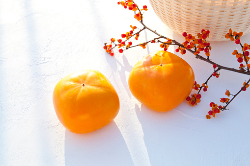 柿「Persimmon Fruits and Staff Tree Branch」:スマホ壁紙(4)