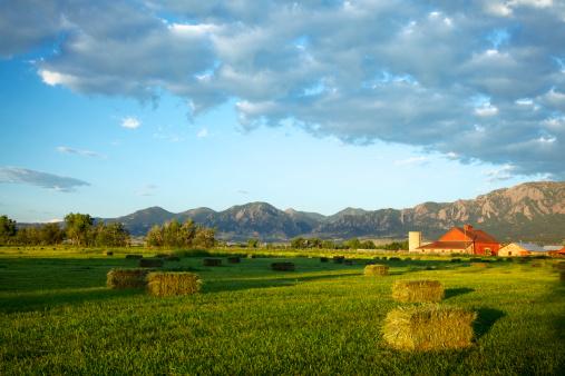 Rolling Landscape「Red Barn at Sunrise」:スマホ壁紙(2)