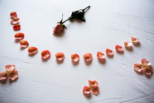 Rose「Bed with roses」:スマホ壁紙(2)