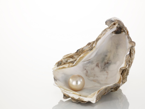 Mollusk「Pearl on oyster shell, close-up」:スマホ壁紙(3)