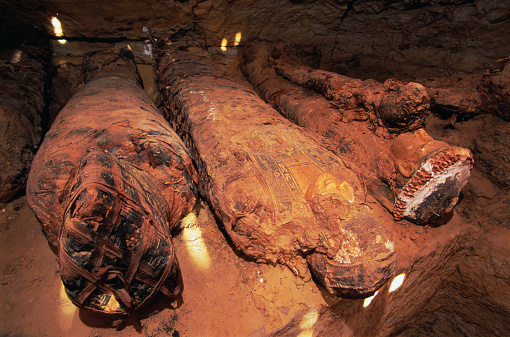 大昔の「Mummified Remains in Tomb of the Golden Mummies」:スマホ壁紙(18)