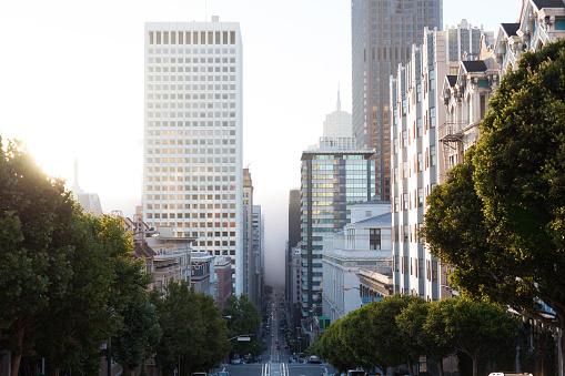 Avenue「Streets of San Francisco at Morning, California」:スマホ壁紙(3)
