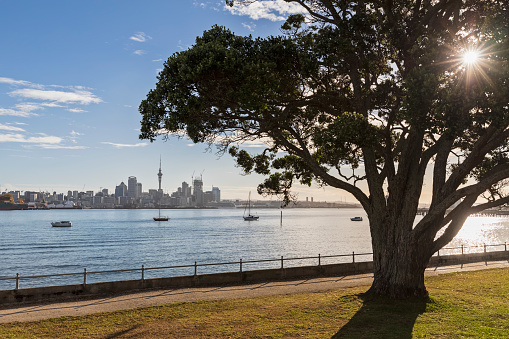 Auckland「Modern buildings and Devonport by sea against sky in Auckland, New Zealand」:スマホ壁紙(12)